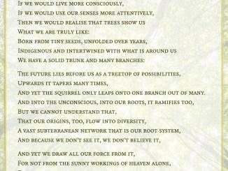 Treeness - Visual Poem (Text: Martin Duehning)