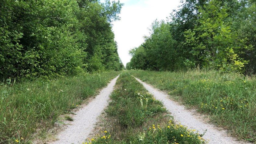 Uhthoff Trail, Hwy 400 to Orilla, Simcoe County Loop Trail