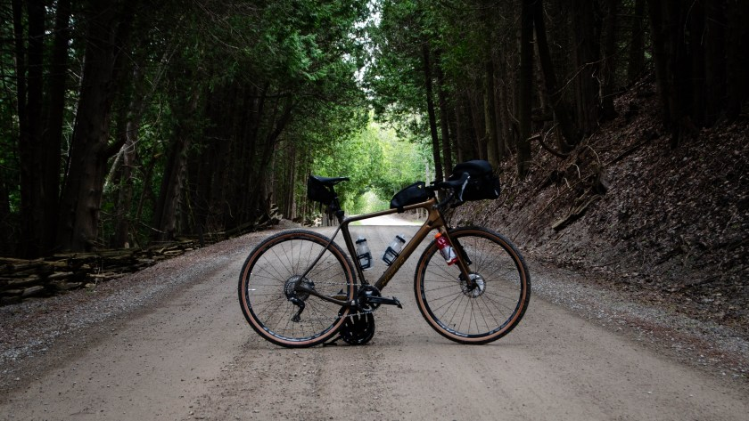 A Picture of My Norco Search in a Tree Tunnel Along 20 Side Road.