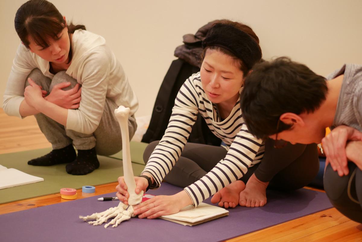 女性は脛骨(けいこつ)と足先の骨模型をつなげて足首観察している様子