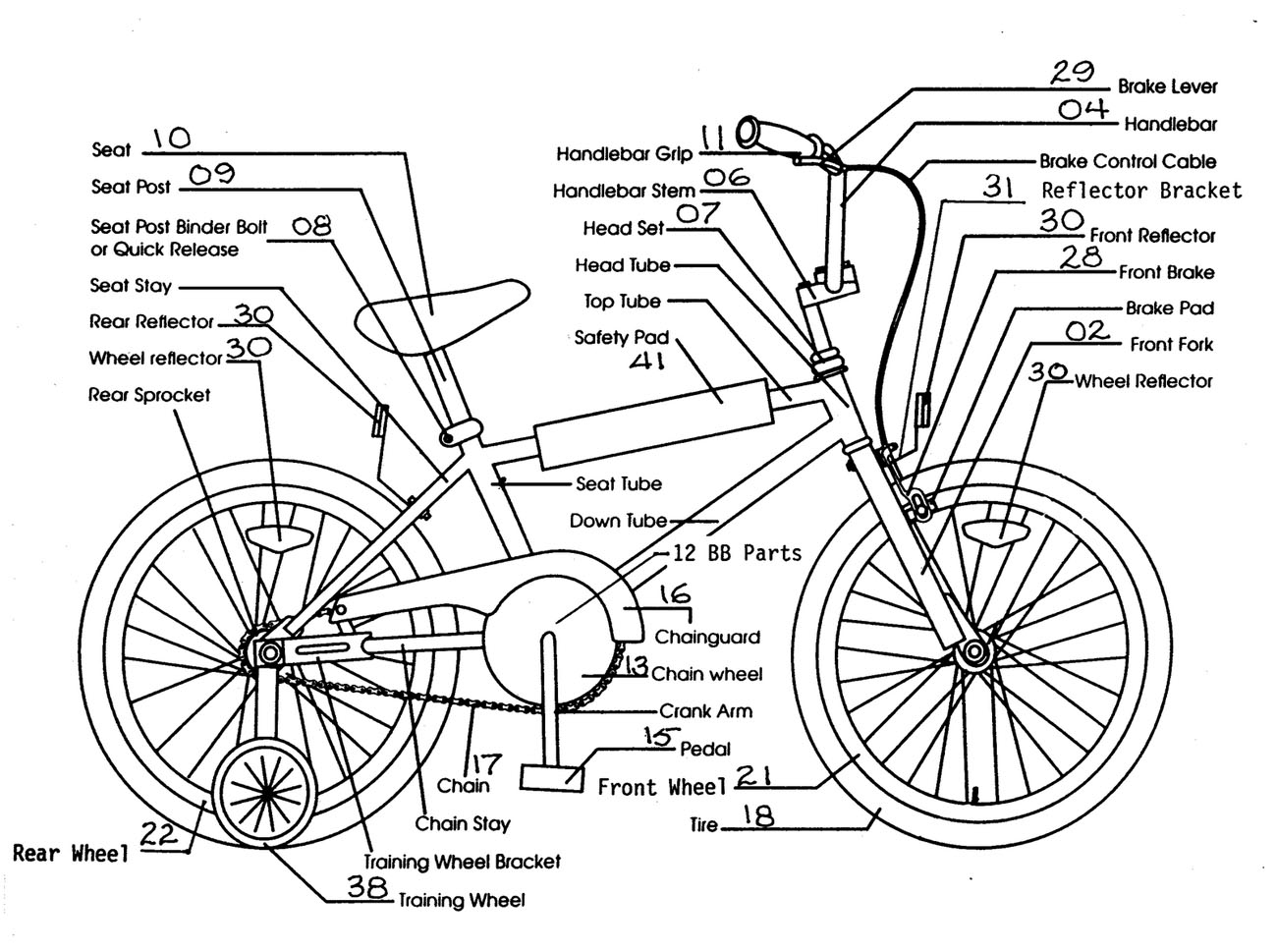 Bicycle Structure Lateral View Labeled Diagram