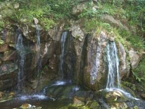 Rock Close in Blarney Castle grounds