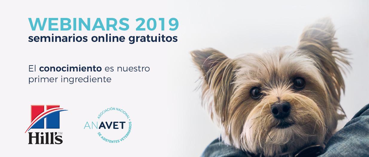 Webinars Hill's 2019
