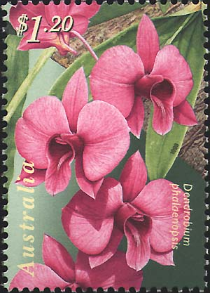 $1.20 Cooktown Orchid stamp issued on 6 August 1998
