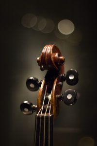 brown string instrument in close up photography