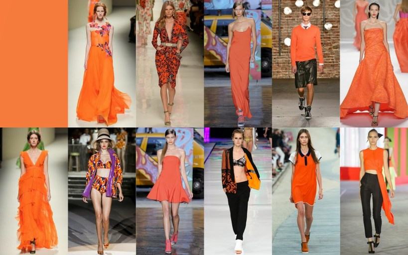 Celosia Orange FCR Spring 2014 Pantone Collections