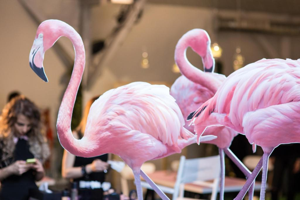 FlamingoFever lansare MAC Cosmetics