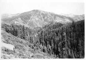 Between La Porte and Johnstown, CA 1946