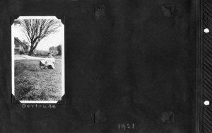 Photo album page, photo of Gertrude.