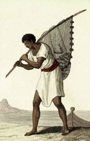 Manna of Boegies