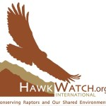 hawkwatch-international-badge