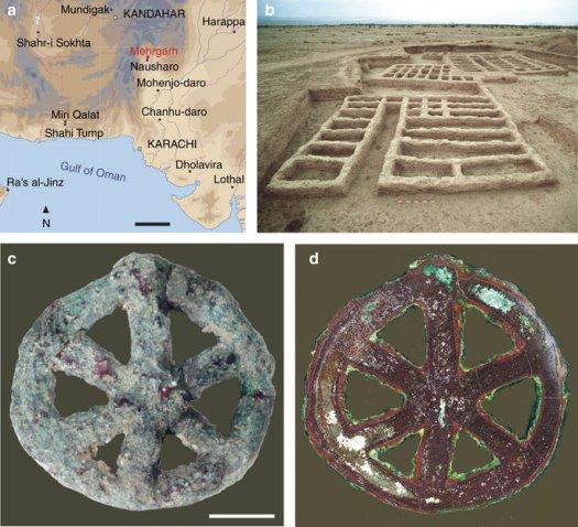 (a) Mapa que indica los principales sitios arqueológicos indo-iraníes que datan del séptimo al segundo milenio antes de Cristo. Barra de escala, 200 km. (b) Vista del sitio arqueológico MR2 en Mehrgarh (sector X, calcolítico temprano, final del período III, 4,500–3,600 aC). (c) Vista del lado frontal del amuleto en forma de rueda. Barra de escala, 5 mm. (d) Imagen de campo oscuro de la sección ecuatorial del amuleto.