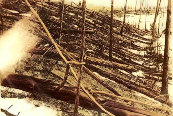 Árboles derribados por el impacto del cometa de Tunguska. (Public Domain)
