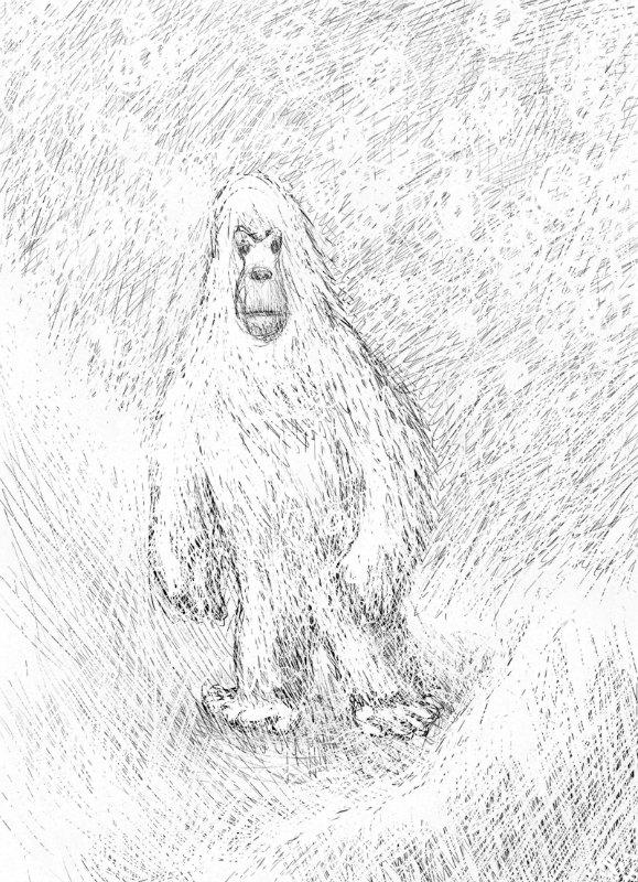 Boceto del Yeti del Himalaya (FAL)