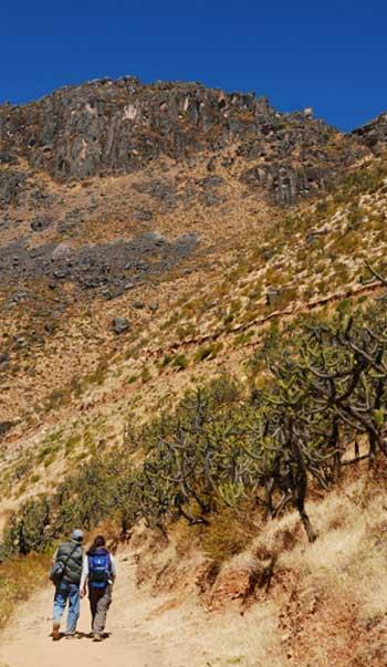 Uno de los caminos que conduce a la meseta de Marcauasi (CC BY 3.0)