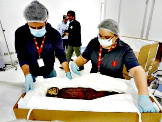 Imagen del proceso de escaneado de las momias Chinchorro en la Clínica Las Condes de Santiago de Chile. (Fotografía: MNHN)
