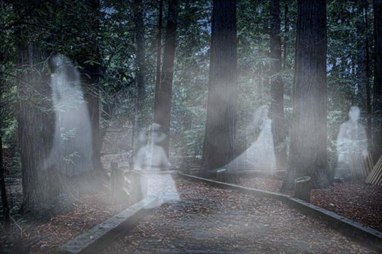 Fantasmas en el bosque. (Flickr/CC BY 2.0)