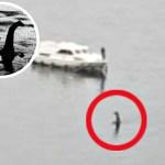 Afirman haber visto y fotografiado en Escocia una criatura desconocida que asocian con el supuesto y famosísimo monstruo del Lago Ness