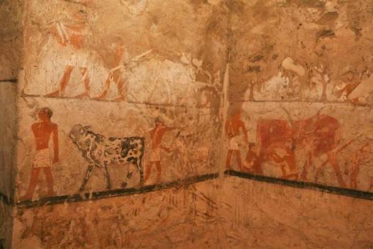 Actividades cotidianas representadas en las pinturas murales de la tumba. (Ministerio de Antigüedades de Egipto)
