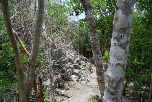 Vista parcial de una de las pirámides de El Mirador. (Geoff Gallice/CC BY-SA 2.0)