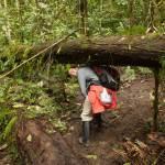 Conocimientos medicinales ancestrales de tribus del Amazonas serán registrados por escrito por primera vez en la historia