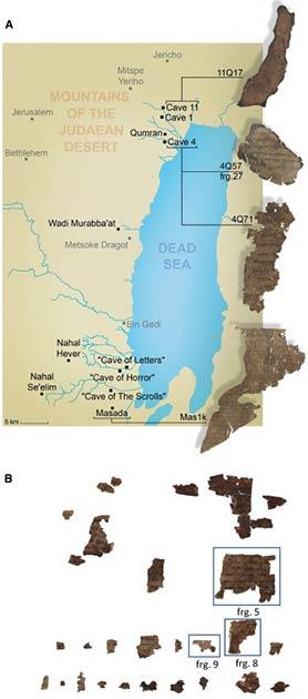 Se encontraron fragmentos del Rollo del Mar Muerto en diferentes lugares. (Las imágenes son cortesía de la Biblioteca Digital de Rollos del Mar Muerto Leon Levy. Autoridad de Antigüedades de Israel. Fotos: Shai Halevi./ Cell)