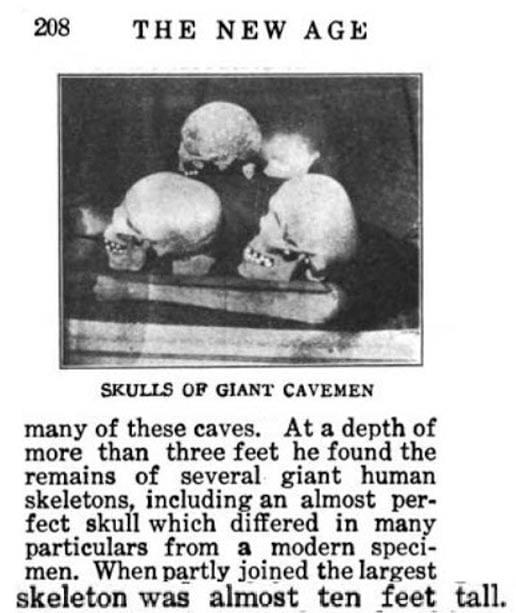 Figura 15: Cráneos de los gigantes con deformación craneana.