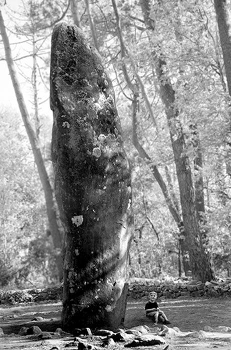 Carnac menhir subtítulo: Una de las 80.000 menhires en la región de Carnac. Imagen de Freddy Silva