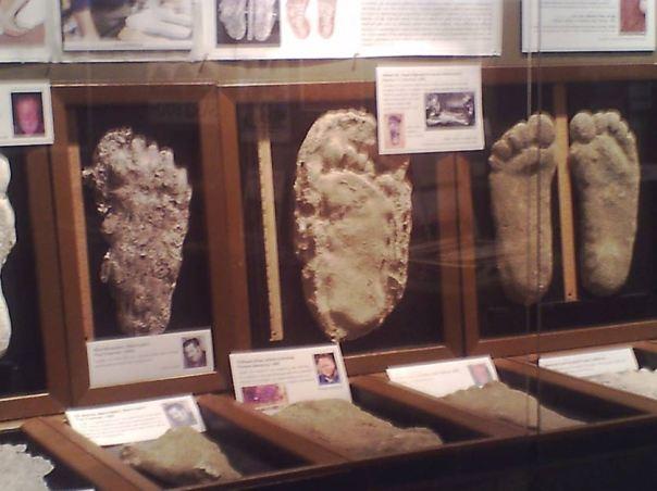 Bigfoot echa por YA-YA2001