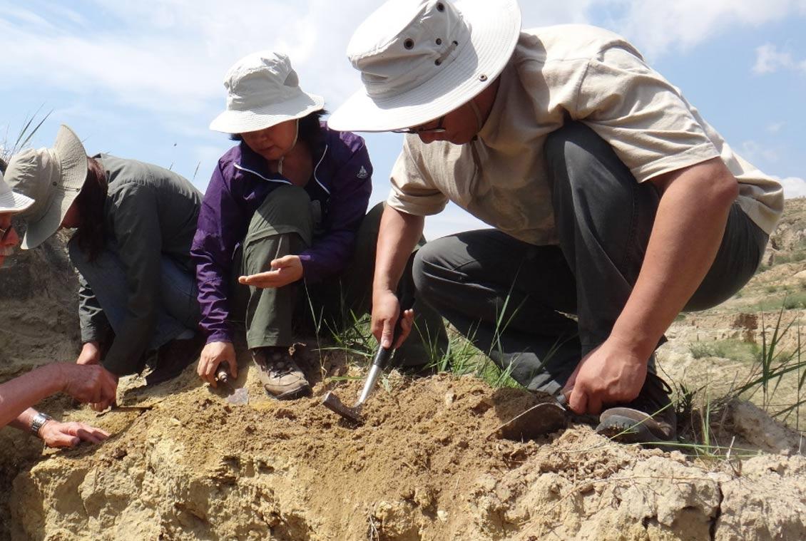 Los investigadores que llevan a cabo excavaciones en la cuenca Nihewan