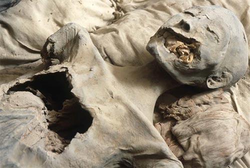 mummy nefertiti - La búsqueda para encontrar Nefertiti, reina del Nilo