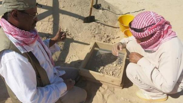 Las excavaciones en curso en los sitios en Marawah Island.