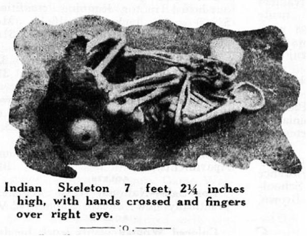 Figura 14: Un esqueleto más de 7 pies que se encuentra en la Isla Catalina.