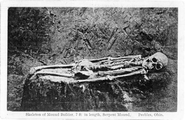 Figura 5: El esqueleto 7 pies de Serpent Mound cortado por las rodillas. Cortesía de Jeffrey Wilson.