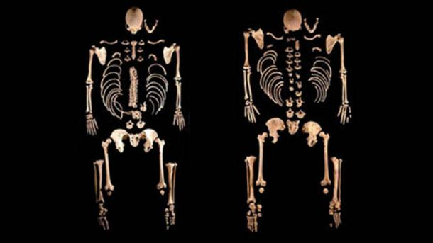 These two skeletons in La Braña, northwestern Spain, belonged to dark-haired, blue-eyed brothers who lived 8,000 years ago and were most closely related to hunters and gatherers in Central Europe. (Julio Manuel Vida Encinas)
