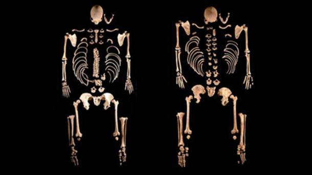 Diese zwei Skelette in La Braña im Nordwesten Spaniens gehörten Brüdern mit dunklen Haaren und blauen Augen, die vor 8000 Jahren lebten und am engsten mit Jägern und Sammlern in Mitteleuropa verwandt waren. (Julio Manuel Vida Encinas)