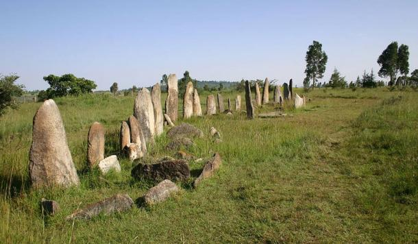 The Tiya stones stand in a row in a lush landscape in the Gurage Zone of Ethiopia