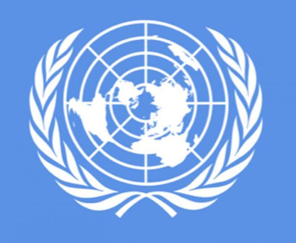 La bandiera delle Nazioni Unite è una proiezione equidistante vista dal Polo Nord.