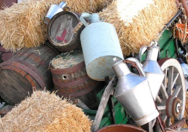 Il latte d'asina è ancora usato in tutto il mondo per i suoi molti benefici per la salute
