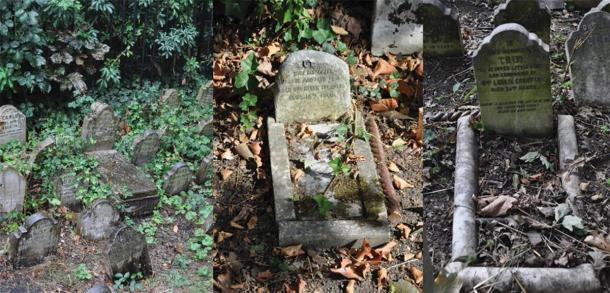 Exemple d'utilisation de pierres de corps, de bordures et de pierres tombales pour ressembler à l'apparence d'un lit au Hyde Park Pet Cemetery.  (Photographie de E. Tourigny, prise avec l'autorisation de The Royal Parks / Antiquity)