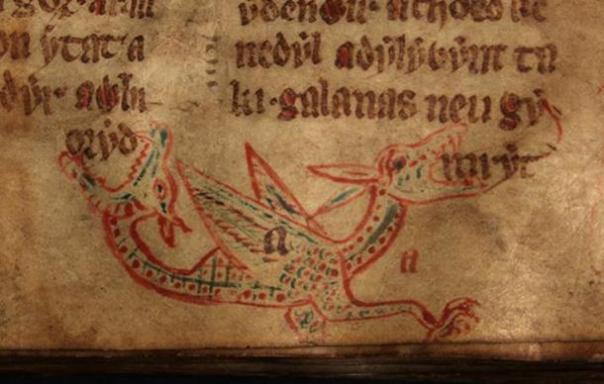 Un wyvern de un manuscrito del siglo 14 galesa.