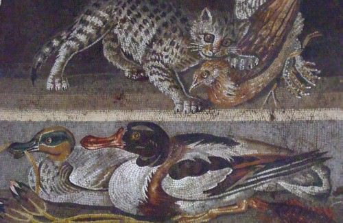 Image result for ancient World cats