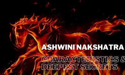 ashwini nakshatra characteristics