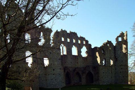 Visit Ireland and Belvedere