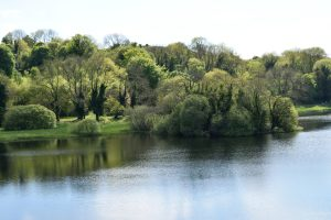 Tour of Ireland visit Lough Gur