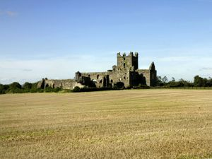 Pics from Ireland tours Dunbrody Abbey