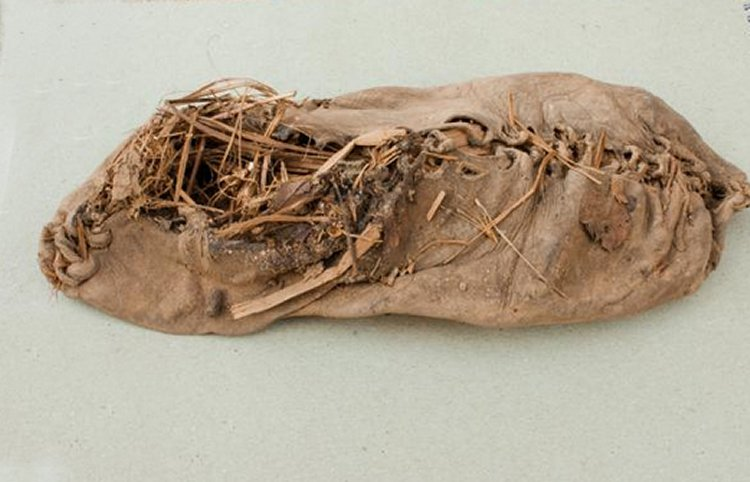 Stuffed with grass, perhaps as an insulator or an early shoe tree, the 5,500-year-old moccasin-like shoe was found exceptionally well preserved—thanks to a surfeit of sheep dung—during a recent dig in an Armenian cave.