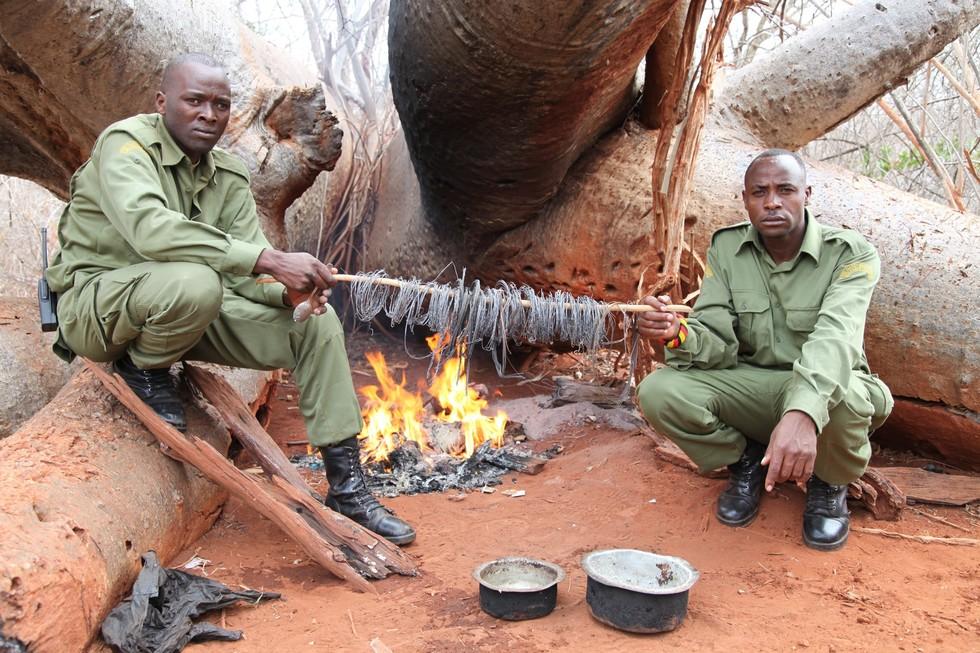 Guardas do KWS exibem armadilhas postas para capturar animais, que foram apreendidas. Foto: David Shedrick Wildlife Trust