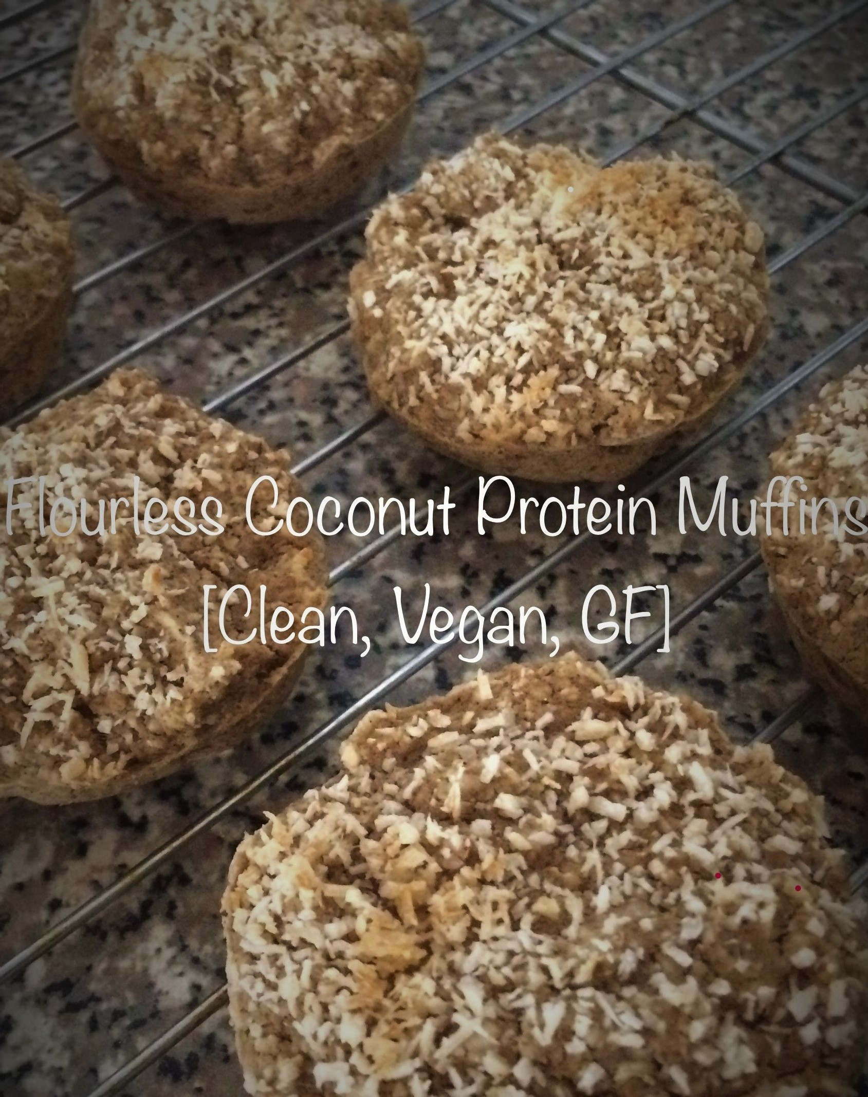 Flourless Coconut Protein Muffins [Clean, Vegan, GF] ...And A Dash of Cinnamon