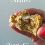 Peanut Pumpkin Muffins [Clean, LC, GF, Vegan] Single ...And A Dash of Cinnamon